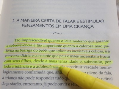 livro celso antunes