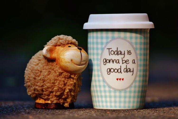 hoje sera um dia bom